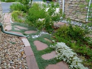 Gutter channels rainwater into gardens.